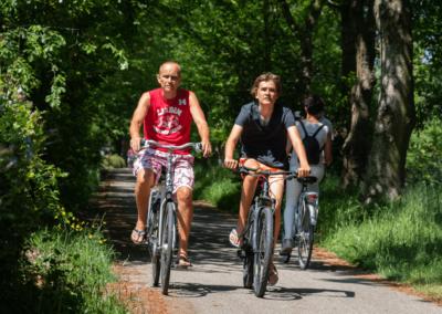 fietsen_camping_rijsterbos