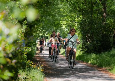 fietsverhuur_camping_rijsterbos